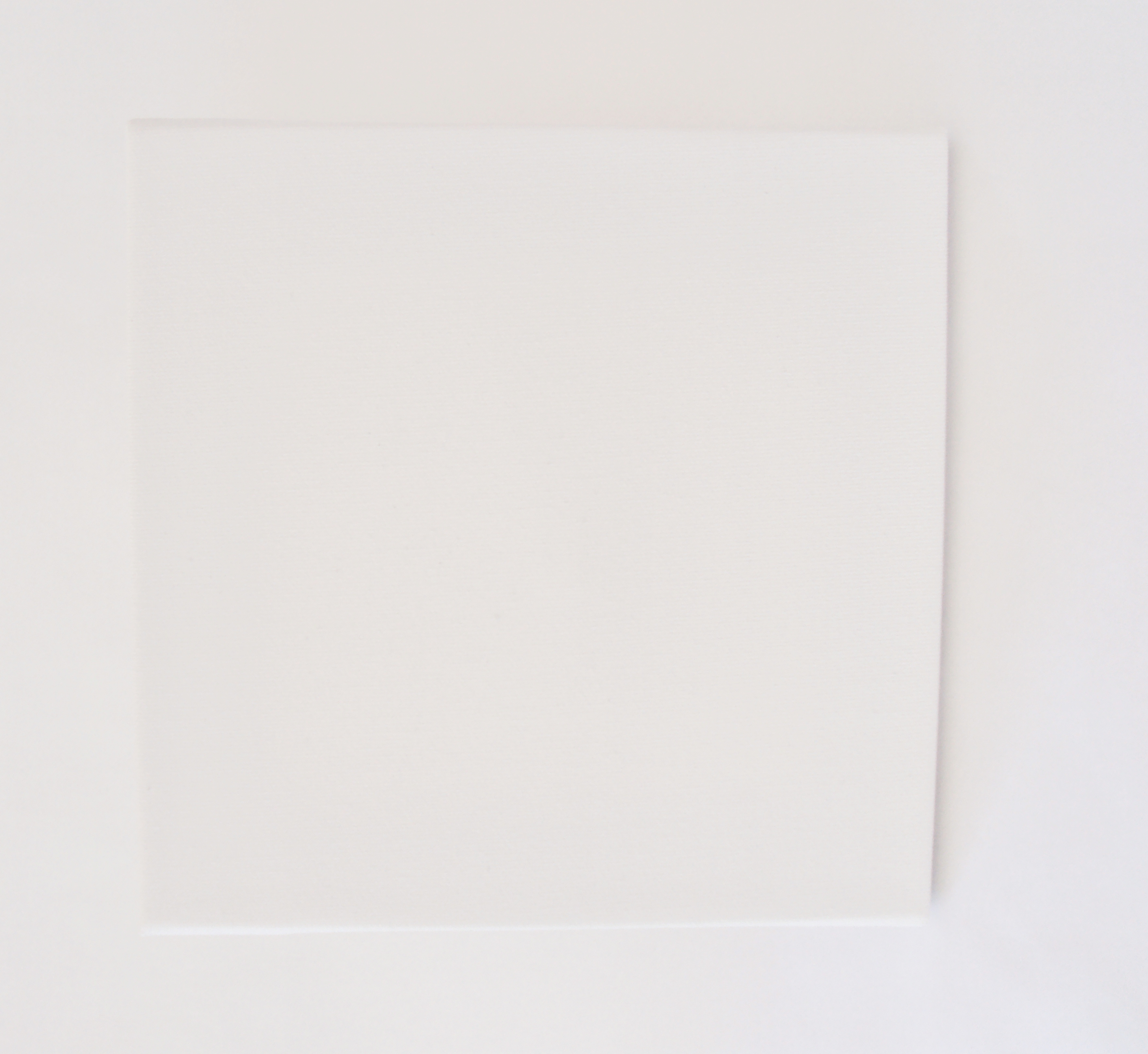 It 39 s a cinch thistlewood farm for White canvas to paint