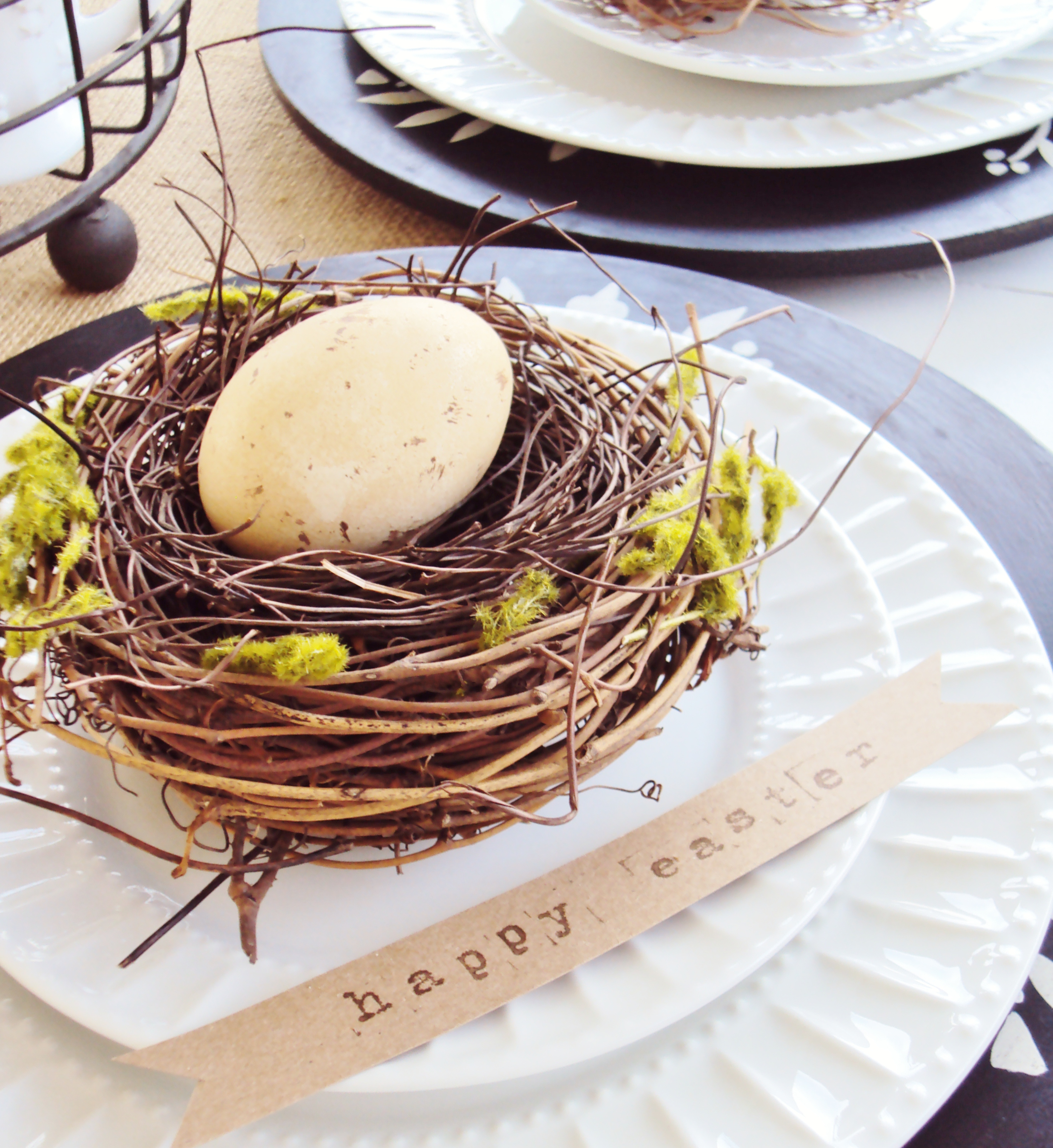 Egg-and-Nest